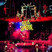 Фееричное,  неповторимое «AQUA-show» для всей семьи